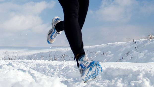 how to give your dog exercise in the winter